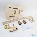 Fender Telecaster Thinline Bigsby Maple Fretboard - Gold Hardware